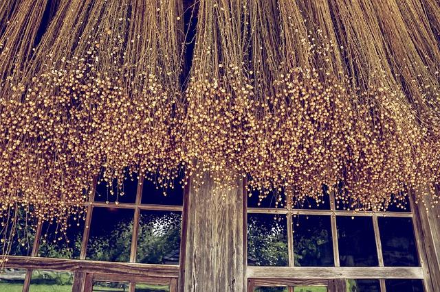 Huile de lin bois : ses bienfaits et caractéristiques