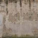 Enlever moisissure mur : Comment nettoyer la moisissure facilement ?