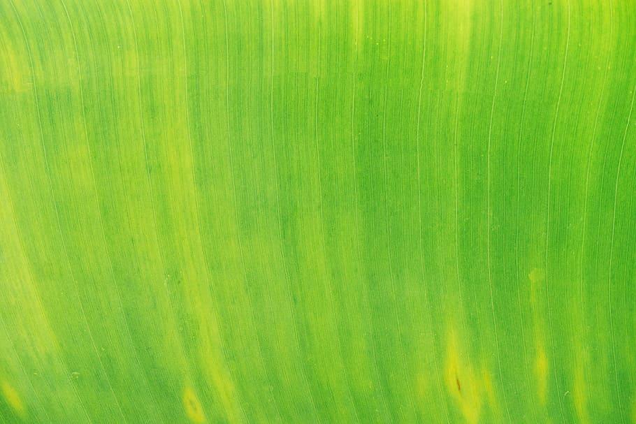 comment faire du vert
